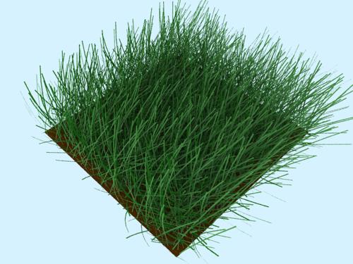 blender-3d-yafaray-realistic-grass.png