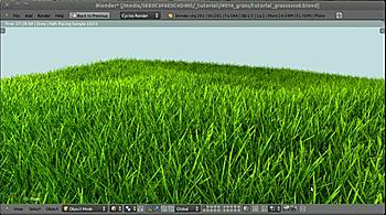 cycles-grass