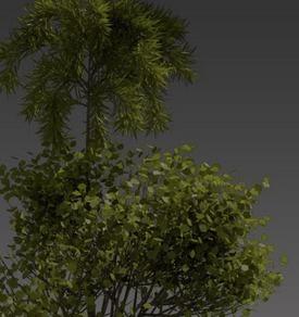 Blender-Trees-Architecture.jpg