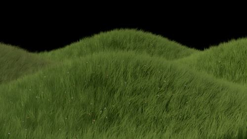 blender-cycles-rendering-grass.jpg