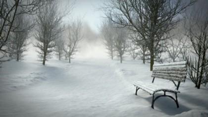 Winter environment
