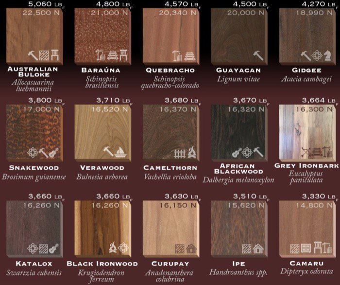 How To Choose Wood For Interiors In Architecture • Blender